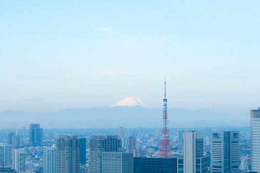 東京タワー富士山.jpg